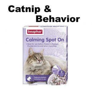 Catnip & Behaviour
